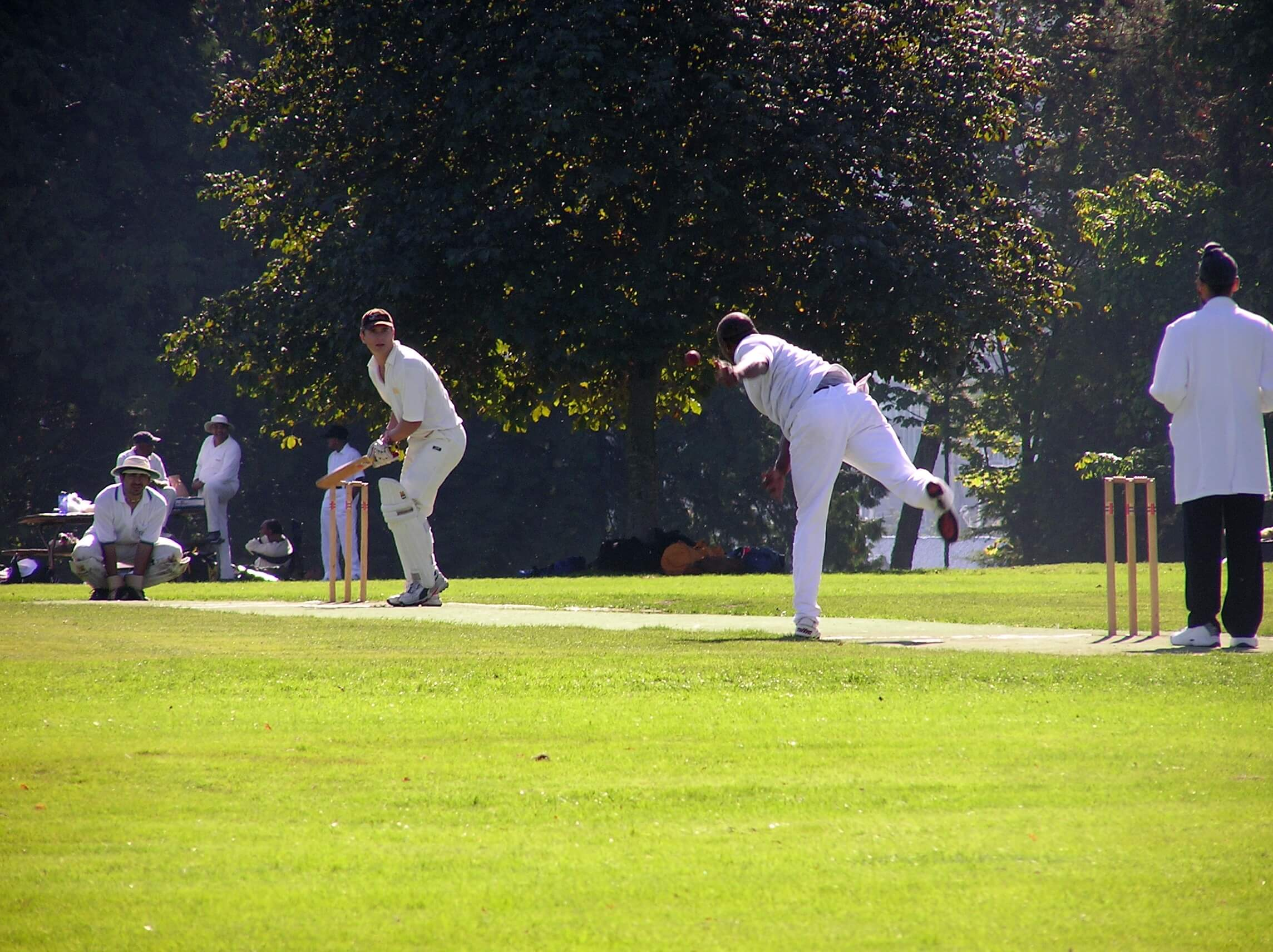 Teams on a cricket tour play in Stanley Park