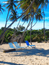 rugby tours to Barbados
