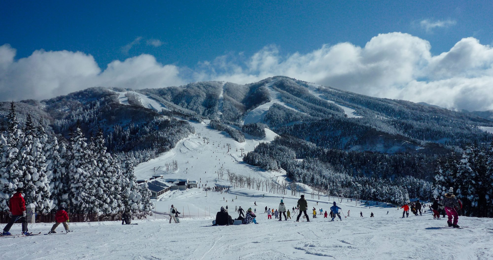 Skiers and snowboarders on the piste at Japan's beautiful Hakuba Valley ski resort
