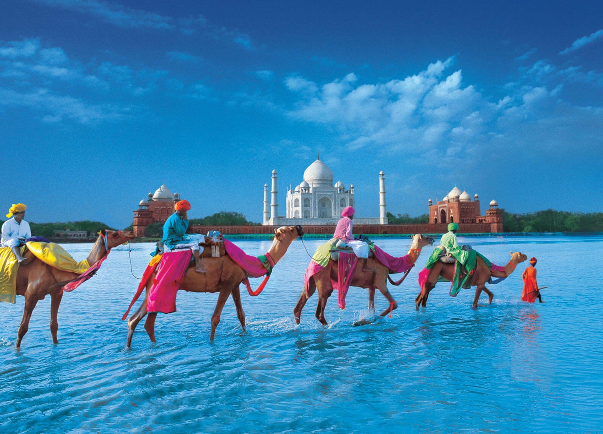 Men on camels cross the Yamuna river ahead of the Taj Mahal