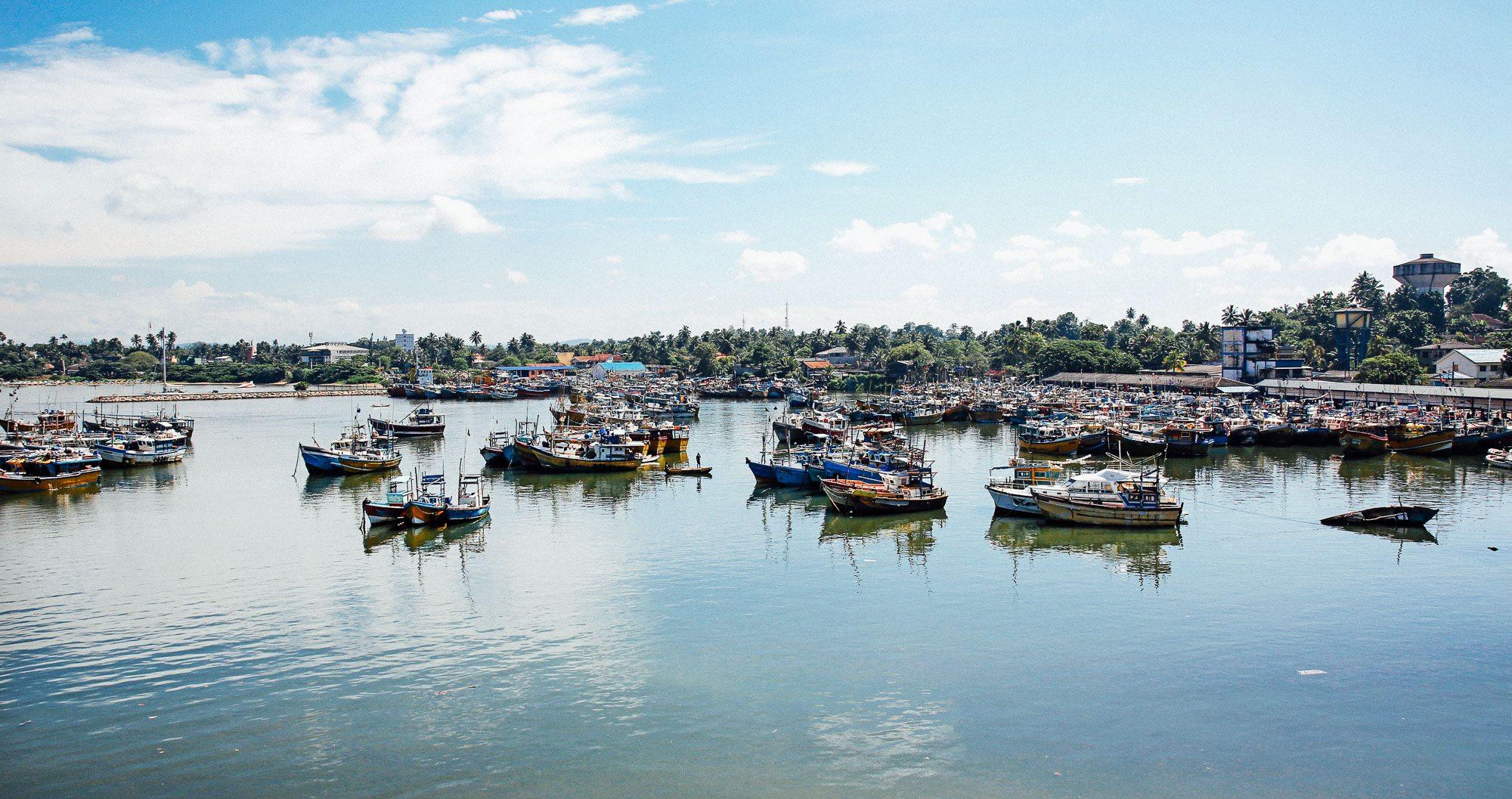 Boats coming in at Beruwala fishing port in Sri Lanka
