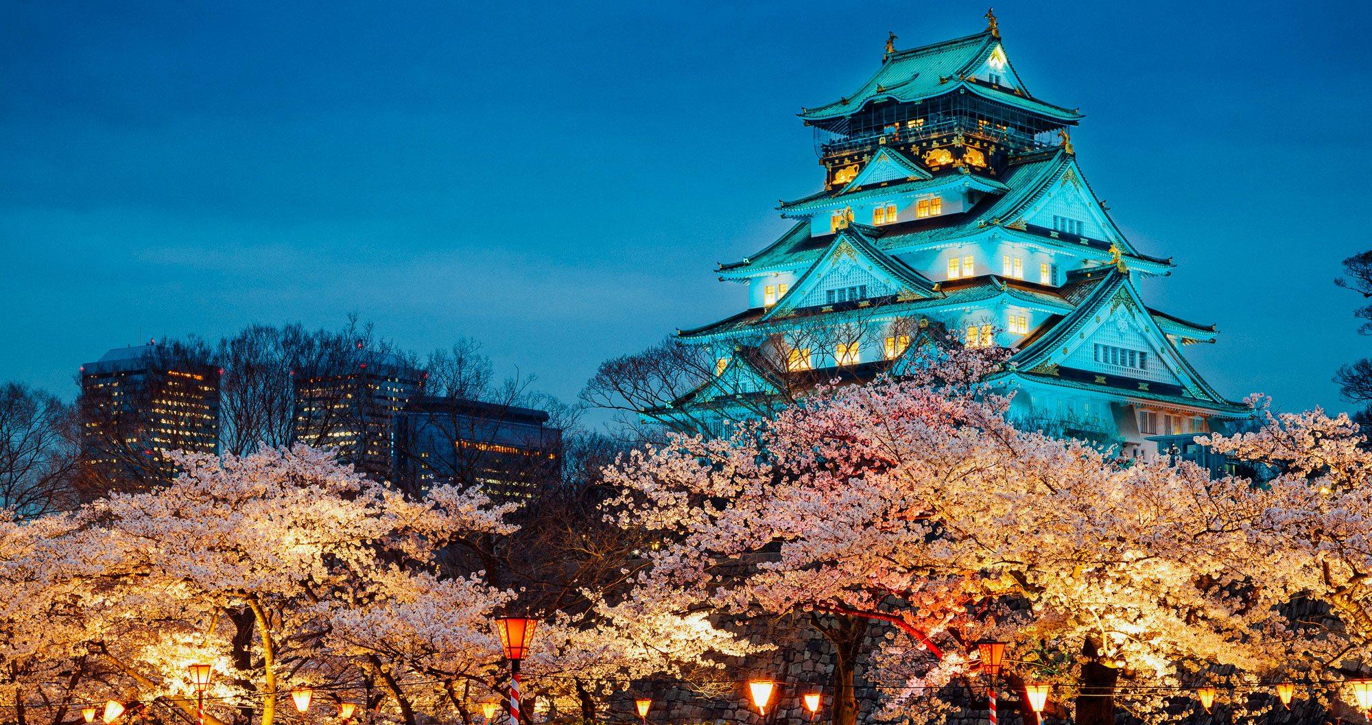 A pagoda illuminated at night, behind some cherry blossom trees in Osaka, Japan