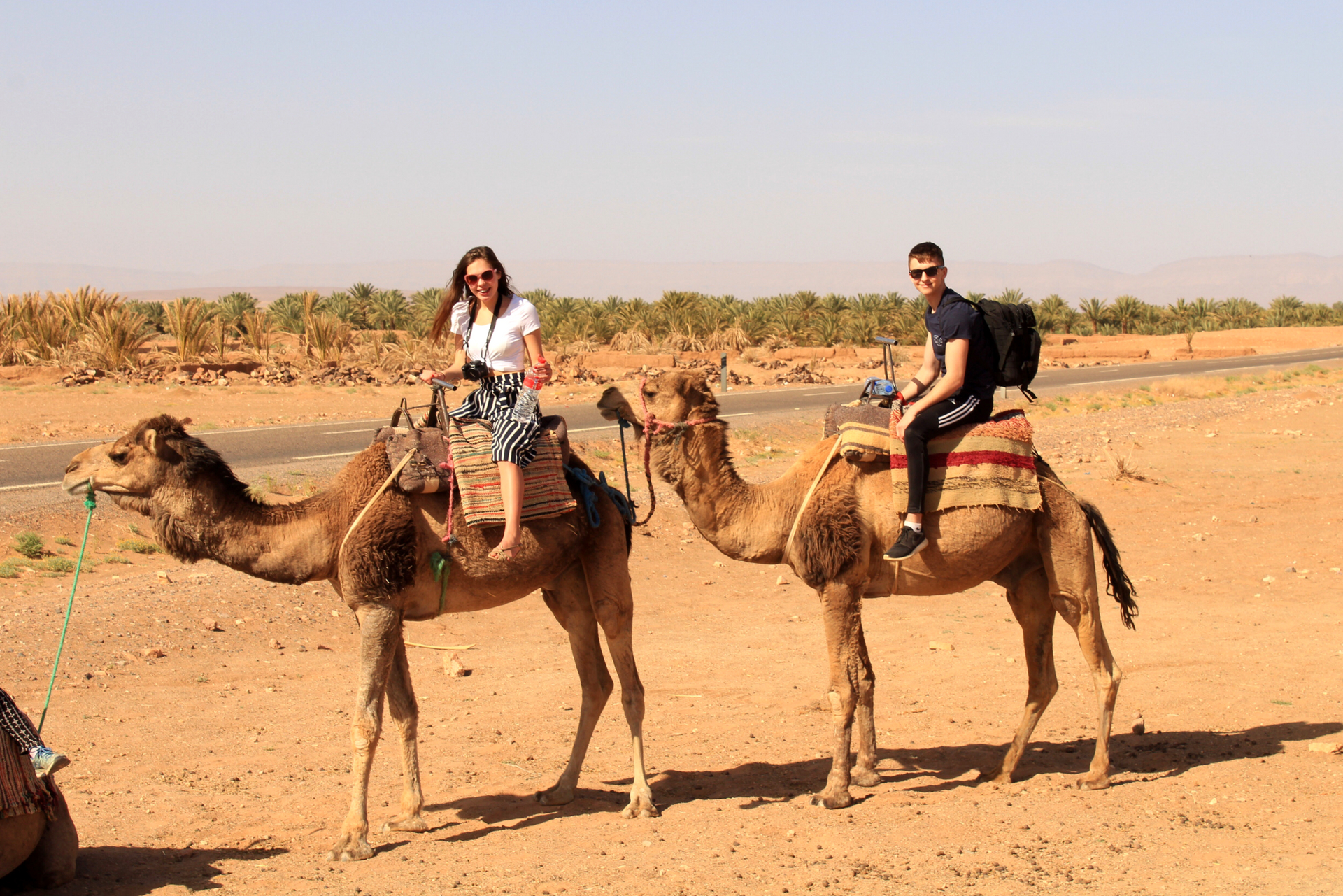 Riding Camels in the Sahara Desert
