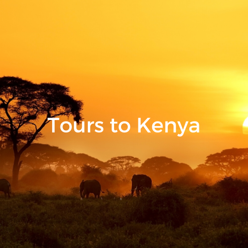 Tours to Kenya