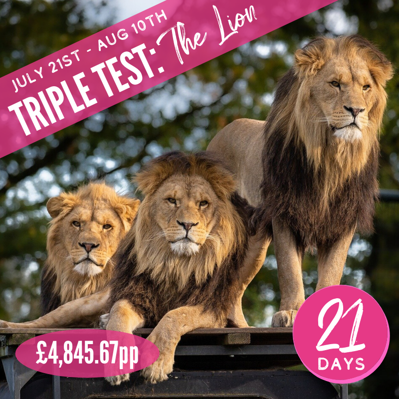 Triple Test The Lion 2021 Supporters Package