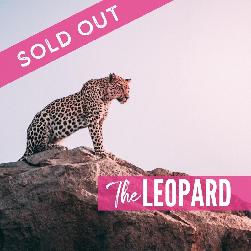 The Leopard Lions Tour 2021 Supporters Packages