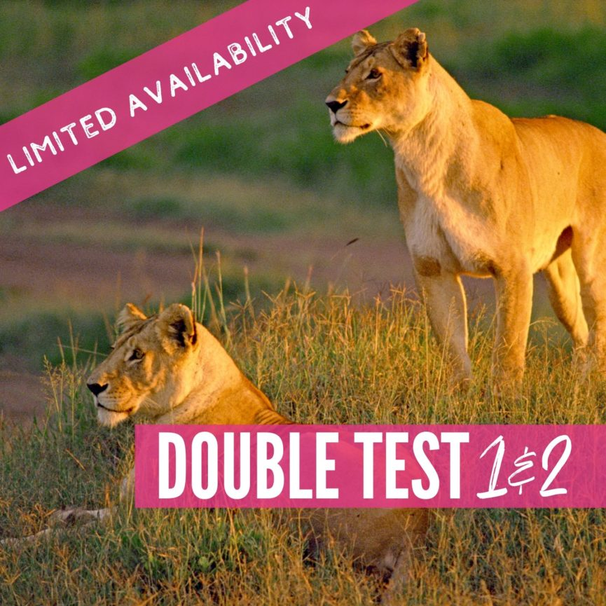 Double Test 1 and 2 2021 Lions package