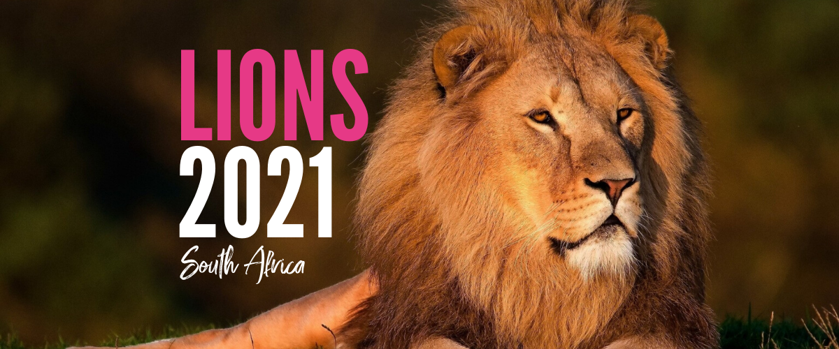 LIONS 2021 South Africa