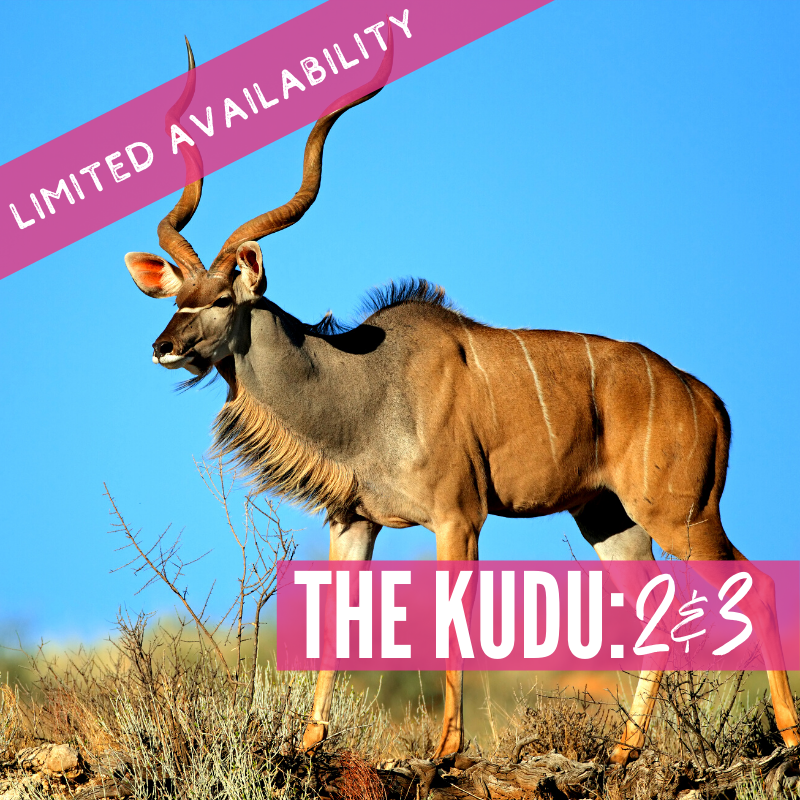 Double Test 2 and 3: The Kudu Lions 2021 package