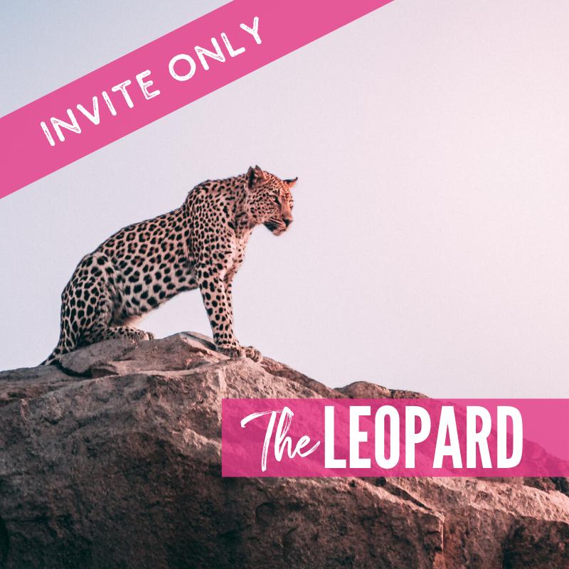 The Leopard Lions Tour 2021 Package