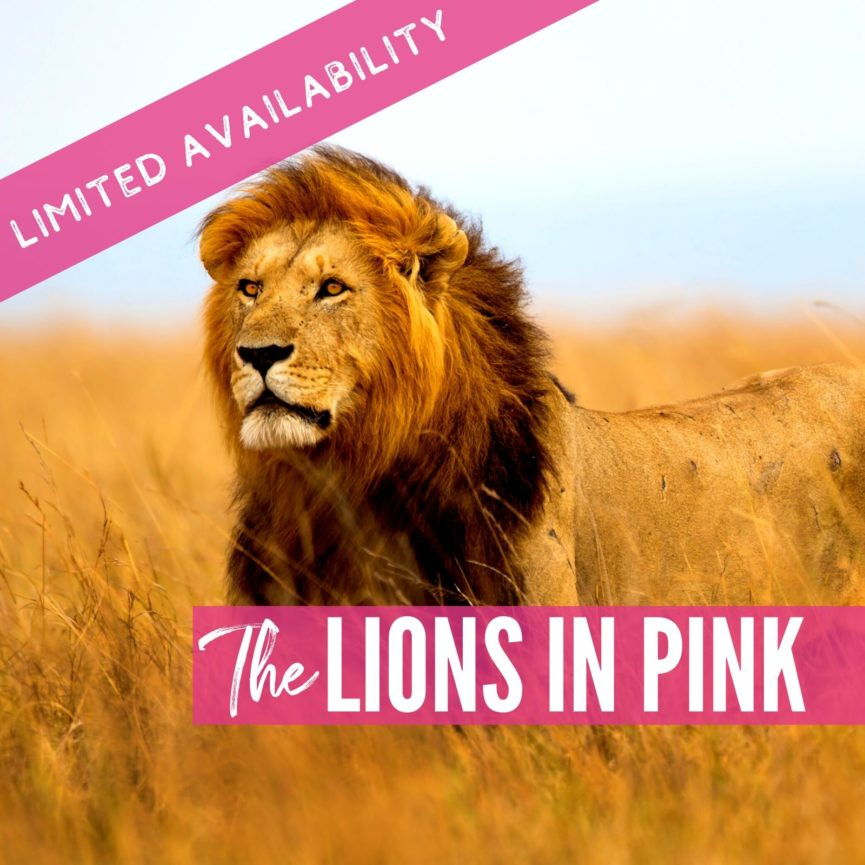 The Lions in Pink Lions 2021 package