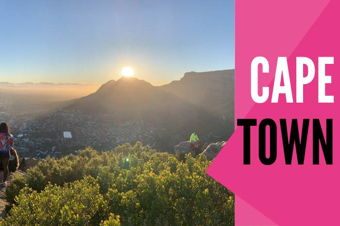 Cape Town South Africa Lions Tour 2021