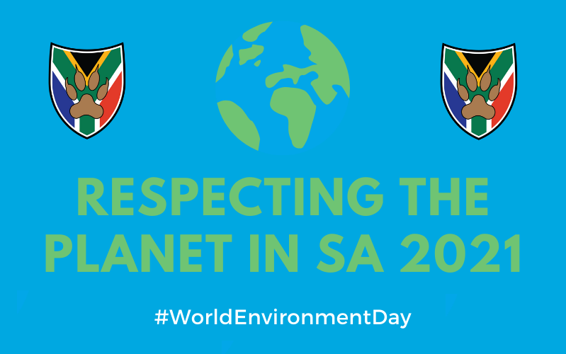 Respecting the planet in South Africa 2021 Lions Tour World Environment Day