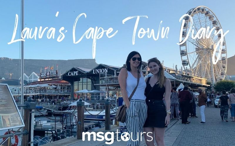 Laura Cape Town Diary | South Africa 2021